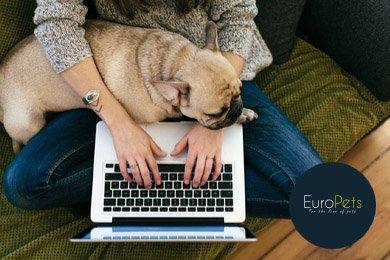 euro pets